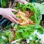 Spracovanie bioodpadu podporí aj ministerstvo, z eurofondov prispeje miliónmi eur